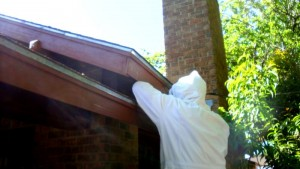 Me trying to wrest the soffit from under the eave.